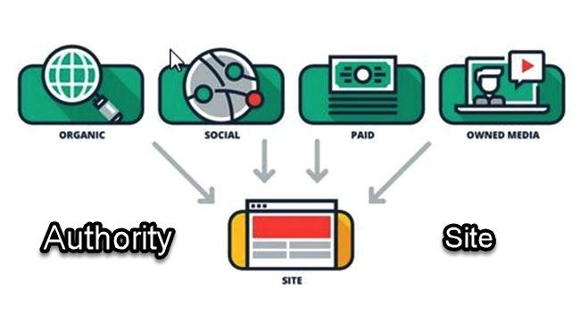 Authority Site là gì?