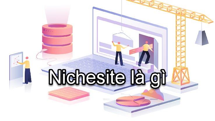 Nichesite là gì?